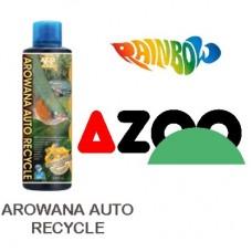 AZOO AROWANA AUTO RECYCLE