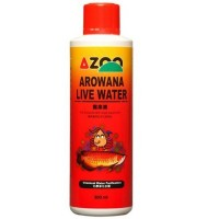 AZOO AROWANA LIVE WATER